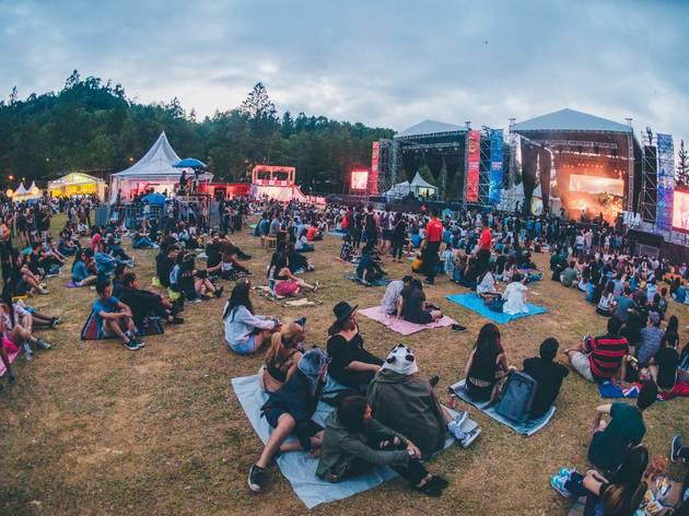 fest 1 - Festival Tips